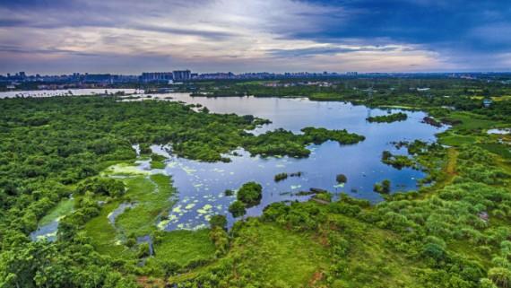 海口:推出6条中秋湿地旅游线路 涵盖亲子观海等主题元素