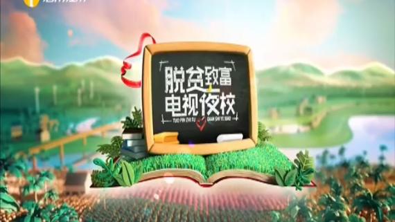 海南省脱贫致富电视夜校第一百四十九课