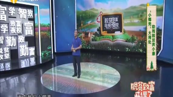 海南省脱贫致富电视夜校第一百八十一课