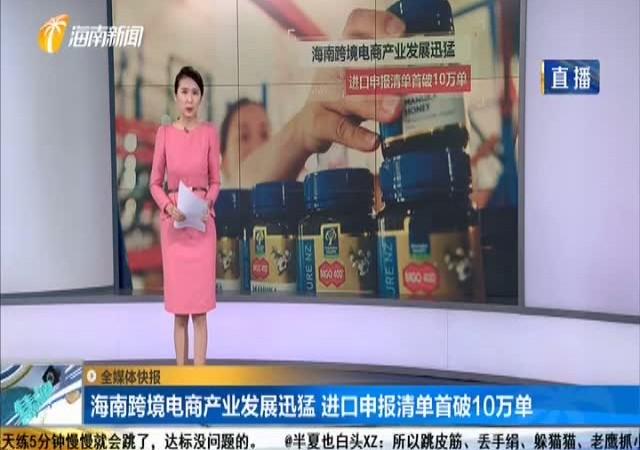 海南跨境电商产业发展迅猛 进口申报清单首破10万单