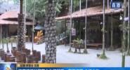 海南槟榔谷黎苗文化旅游区:直面问题 立行立改
