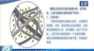 2020年春節黃金周三亞交通出行提示