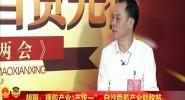 專訪海南省人大代表胡翔