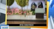 江苏:男子酷爱火车 家中收藏1000多个模型