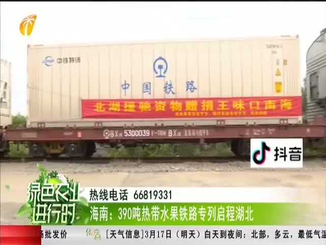 海南:390吨热带水果铁路专列启程湖北