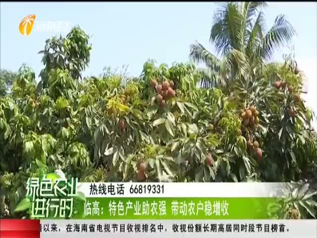 临高:特色产业助农强 带动农户稳增收