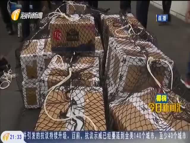 海南集中销毁毒品1.725吨