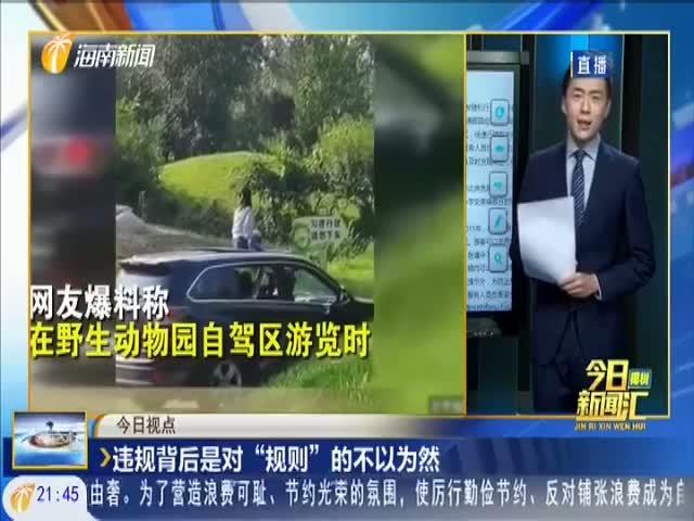 """北京野生动物园""""女孩做车顶游览""""引发关注"""