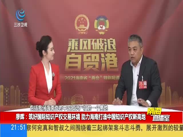 廖晖:筑好国际知识产权交易环境 助力海南打造中国知识产权新高地