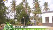 临高美香村:推进人居环境整治 助力美丽乡村建设