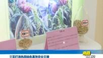 海南获评国家农业绿色发展先行区