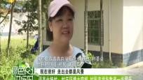 保亭什栋村:村庄环境大变样 村民幸福指数进一步提升