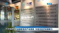 """上海:坚持产业生态化 立足""""生态+""""思维助力产融共赢"""