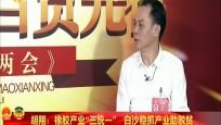 专访海南省人大代表胡翔