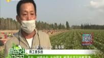 东方:对接企业 主动服务 畅通农产品销售渠道