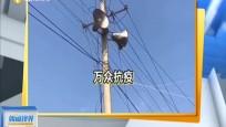 河南:村里宣传安全复工 豫剧广播齐上阵
