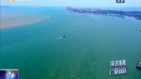 洋浦经济开发区:构建多元化产业园区生态 做好自贸港建设承接准备