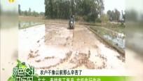 东方:春耕复工复产 农机先行先动