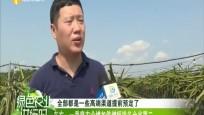 东方:一季度农业增加值增幅排名全省第二