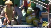 南海伏季休渔期明日结束 海南4大举措保商渔船航行安全