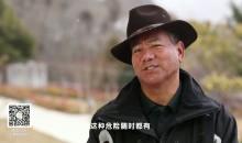 滇金丝猴保护专家 龙勇诚
