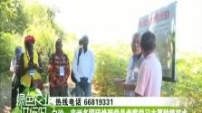 白沙:非洲多国研修班学员考察学习木薯种植技术