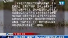 """海南:检察院""""随手拍""""平台上线 公益诉讼案件可一键举报"""