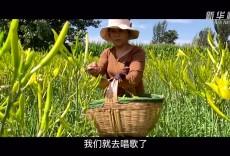 《逐梦大战场——一个农民合唱团的故事》