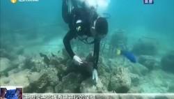 """自貿港奮楫者 李秀保:修復珊瑚礁的""""工程師"""""""