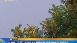 """台风""""红霞""""于今天上午登陆越南 海南仍有较强风雨天气"""