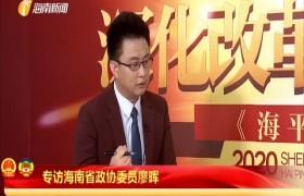 专访海南省政协委员廖晖
