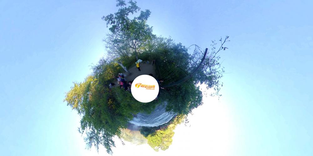 原创VR视频|带您身临其境览非洲
