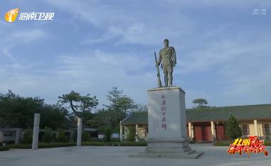 壮丽70年 奋斗新时代·行走老区:海口云龙镇  产业兴 乡村美