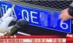 """沈阳交警回应""""对不清晰车牌罚款"""":撤销处罚"""