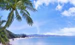 春节黄金周旅游趋势报告:海南位列国内长线游热门目的地第一