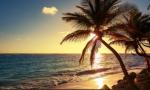 推动海南成为新时代全面深化改革开放的新标杆