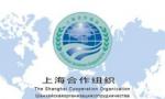 习近平将出席上海合作组织青岛峰会欢迎宴会并致辞
