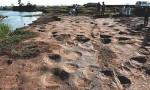 侏罗纪猜想证实 山东郯城县发现300个恐龙足迹