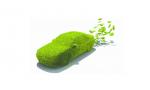 海南省级预算单位购置公务用车应全部选用新能源汽车