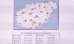 海南首批200台新能源网约车将于今年内投放运营