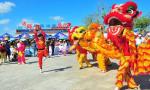 """海南4市县入选""""中国农民丰收节""""百个乡村文化活动候选名单"""