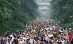 旅游人数收入双高增长靠什么