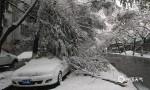 新疆北部降雪频繁 华北黄淮霾今明最重