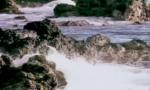 """大型政论专题片《必由之路》(五)""""立国之本""""四分钟速览"""
