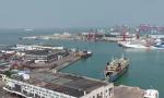 12月24日起海口秀英港将恢复24小时装卸载作业