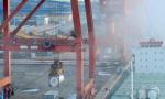 财政部:2019-02-17起中国调整部分进出口关税