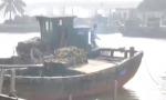 """冷空气将至渔船回港 渔政部门实时""""紧盯""""保安全"""