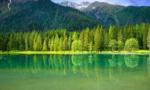 """从""""靠山吃山,靠水吃水""""到守望""""绿水青山"""""""