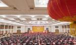 我们在前进路上奋力奔跑——我驻外人员、海外华侨华人热议习近平总书记在春节团拜会上的讲话