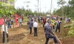 3·12植树节:海南宝岛处处添新绿